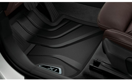 Коврики в салон BMW X1 (F48)