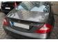 Спойлер Mercedes W219