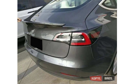 Спойлер Tesla Model 3